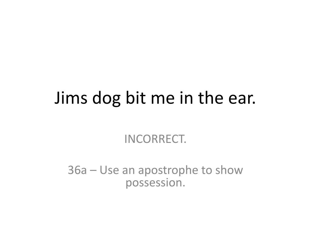 Jims dog bit me in the ear.