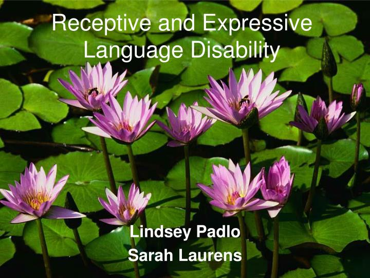 Receptive and expressive language disability