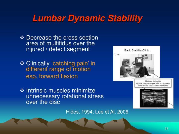 Lumbar Dynamic Stability