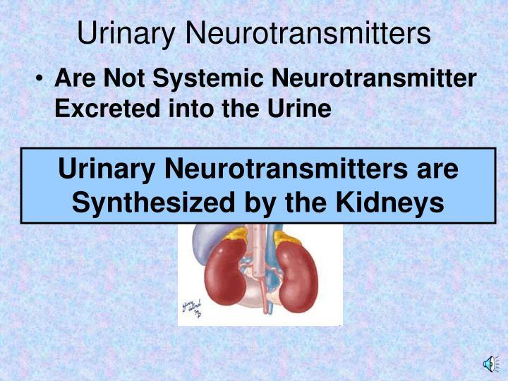 Urinary Neurotransmitters