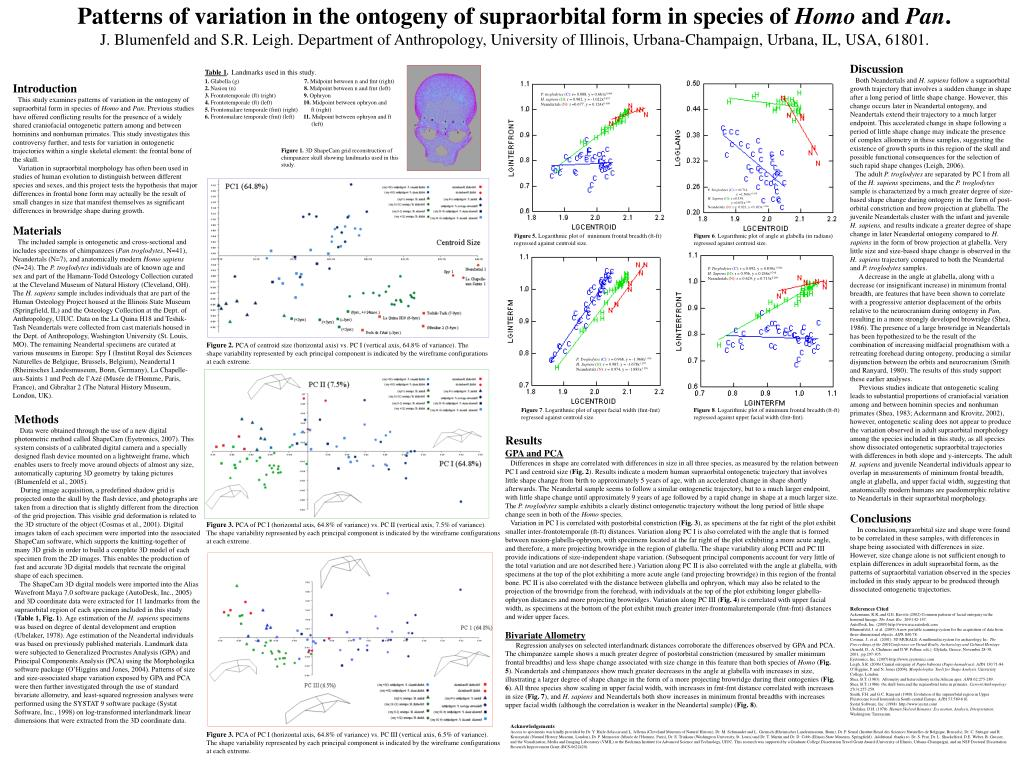Patterns of variation in the ontogeny of supraorbital form in species of