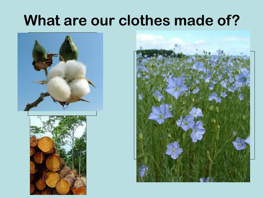 What are our clothes made of?