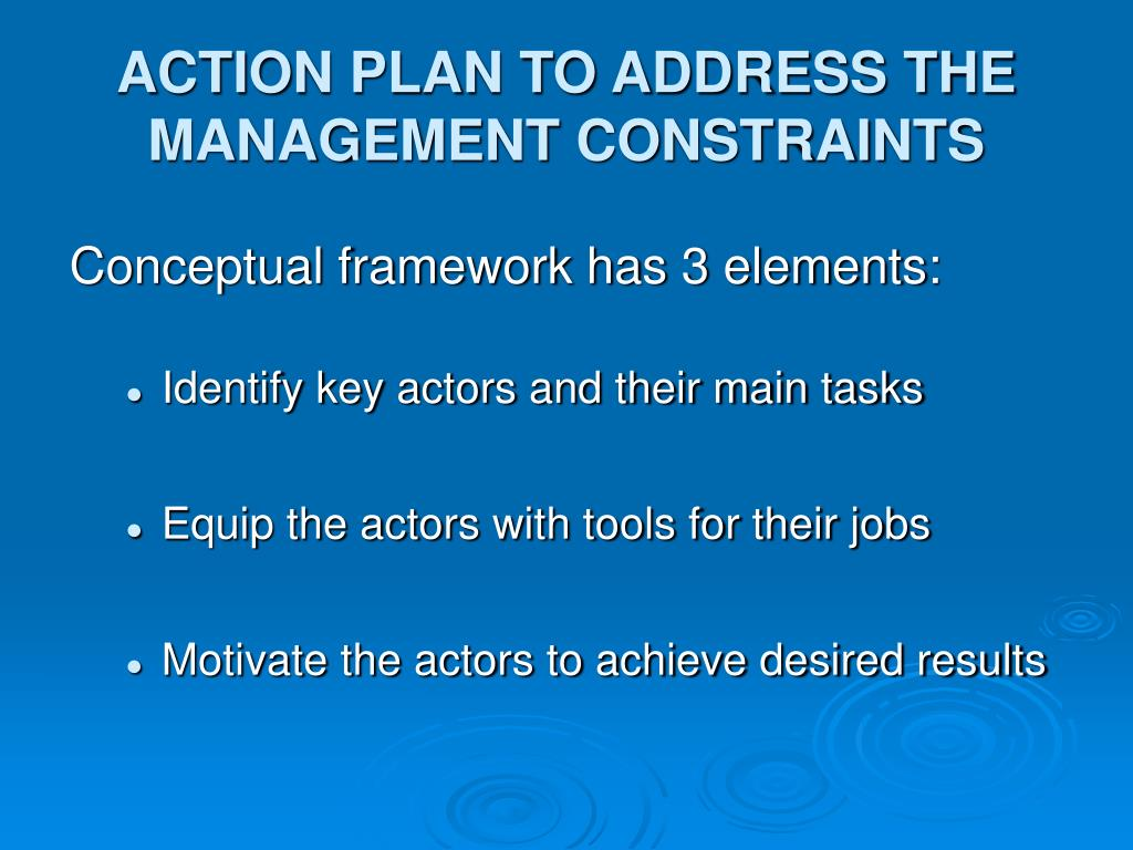 ACTION PLAN TO ADDRESS THE  MANAGEMENT CONSTRAINTS