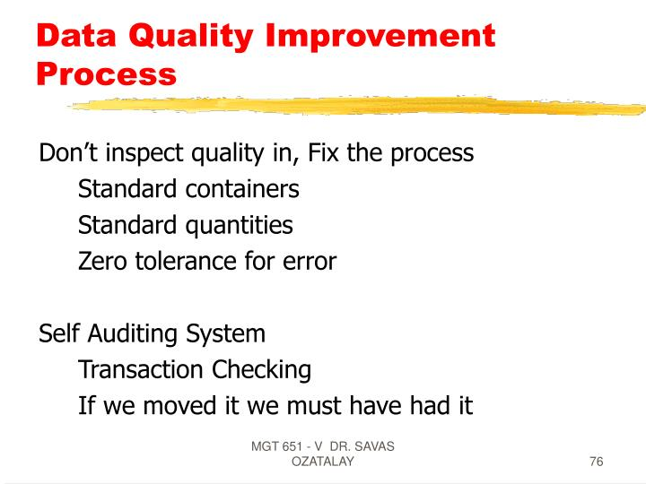 Data Quality Improvement Process