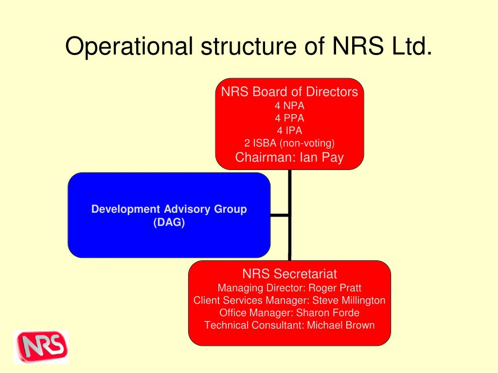 Operational structure of NRS Ltd.