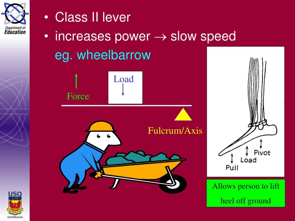 Class II lever