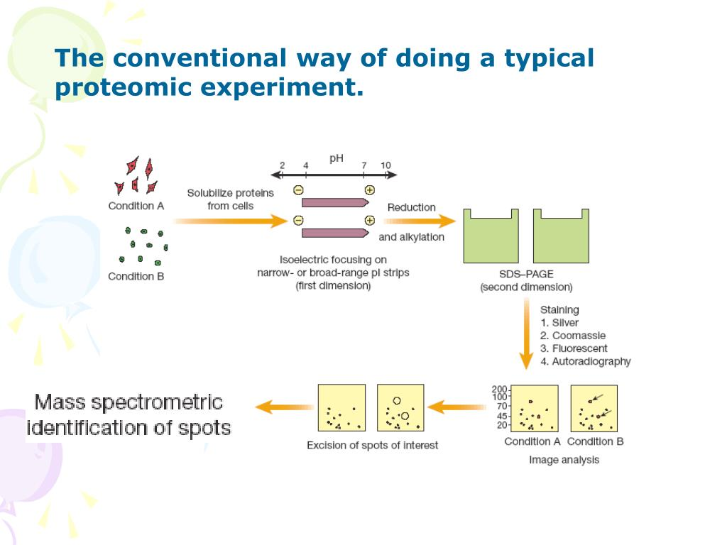 The conventional way of doing a typical proteomic experiment.