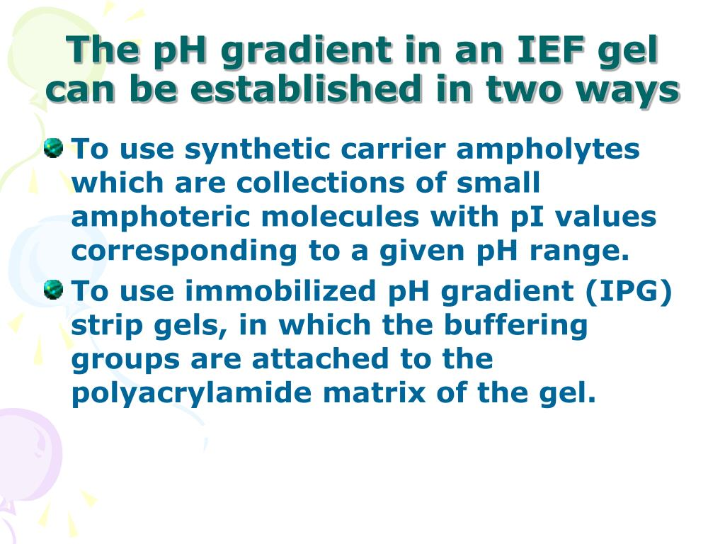 The pH gradient in an IEF gel can be established in two ways