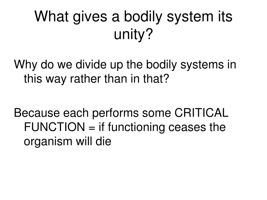 What gives a bodily system its unity?