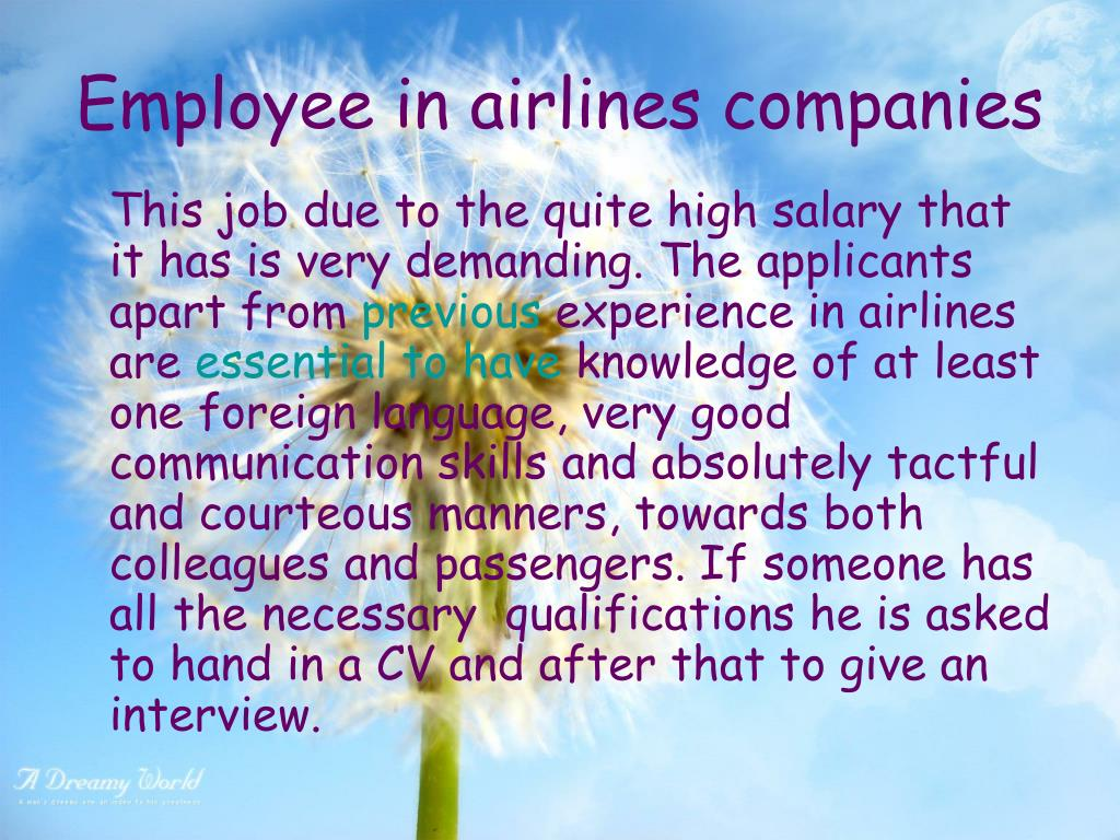 Employee in airlines companies