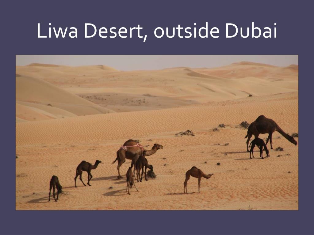 Liwa Desert, outside Dubai
