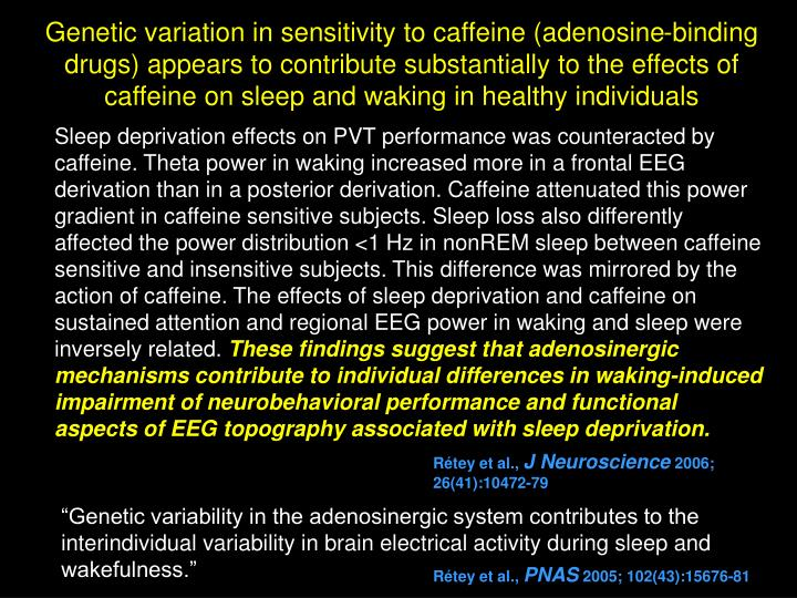 Genetic variation in sensitivity to caffeine (adenosine-binding drugs) appears to contribute substantially to the effects of caffeine on sleep and waking in healthy individuals