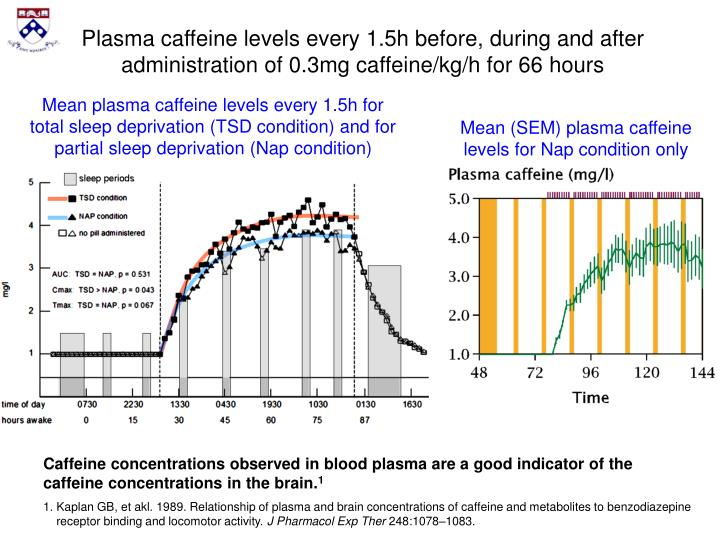 Plasma caffeine levels every 1.5h before, during and after administration of 0.3mg caffeine/kg/h for 66 hours