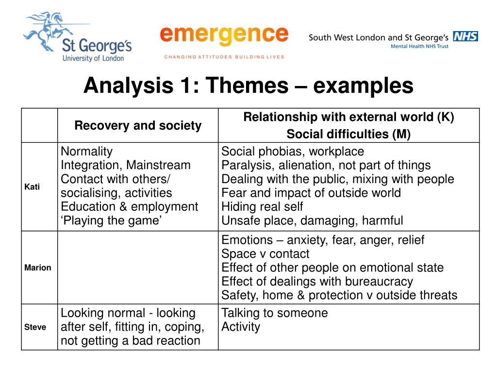 Analysis 1: Themes – examples
