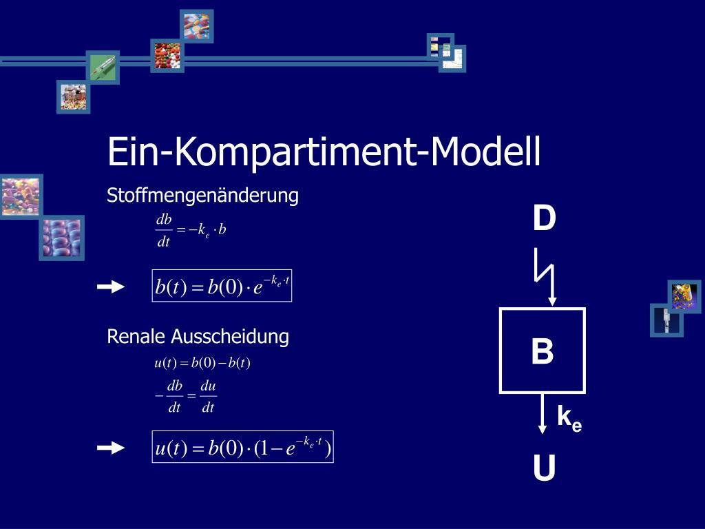 Ein-Kompartiment-Modell