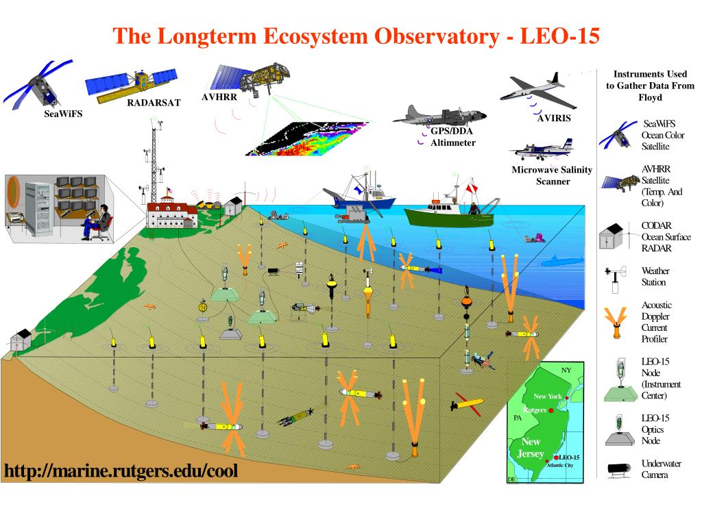 The Longterm Ecosystem Observatory - LEO-15