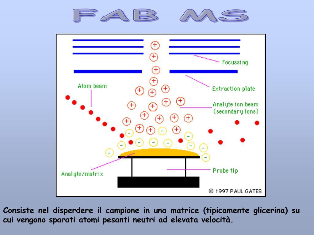 FAB MS