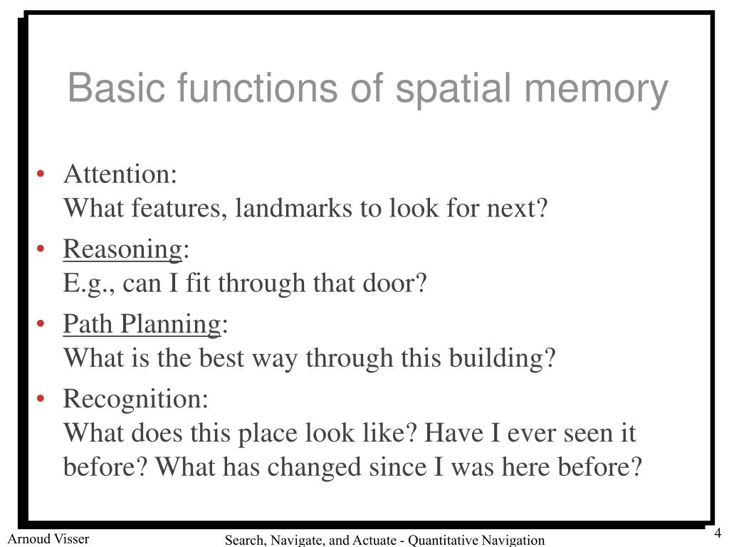Basic functions of spatial memory