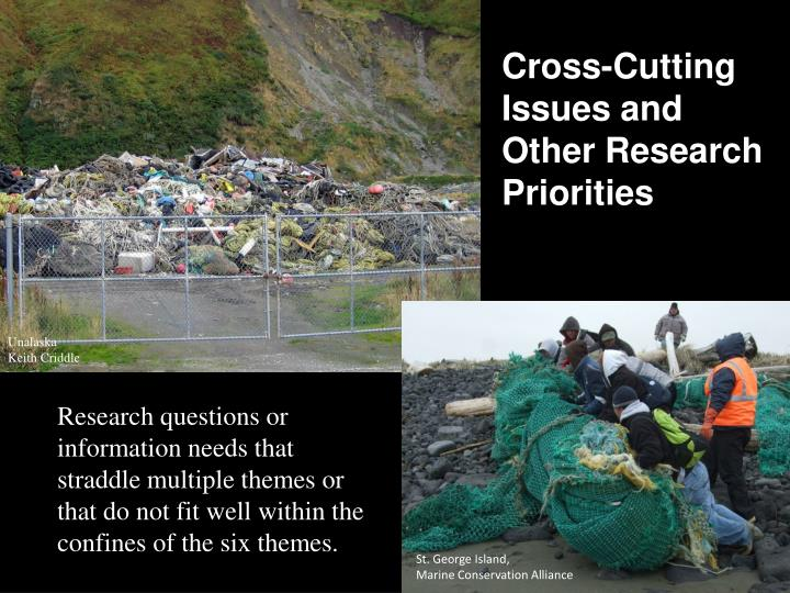 Cross-Cutting Issues and Other Research Priorities
