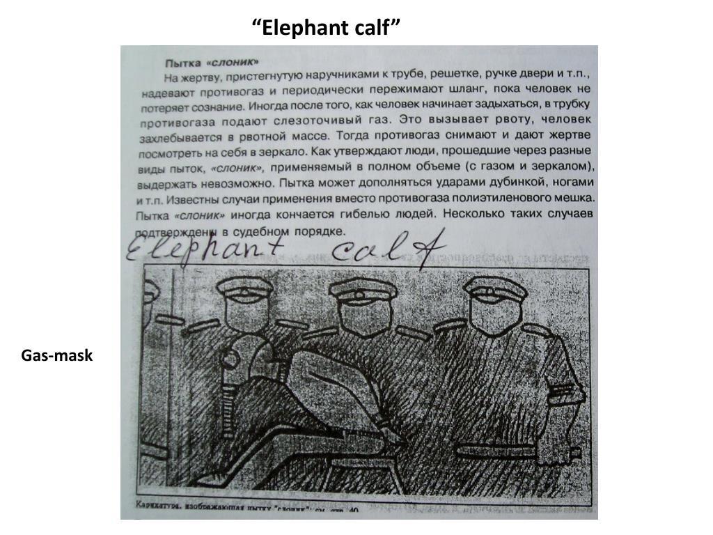 """Elephant calf"""