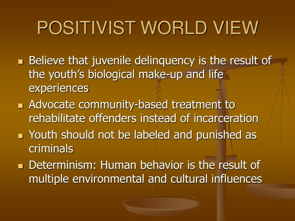 POSITIVIST WORLD VIEW