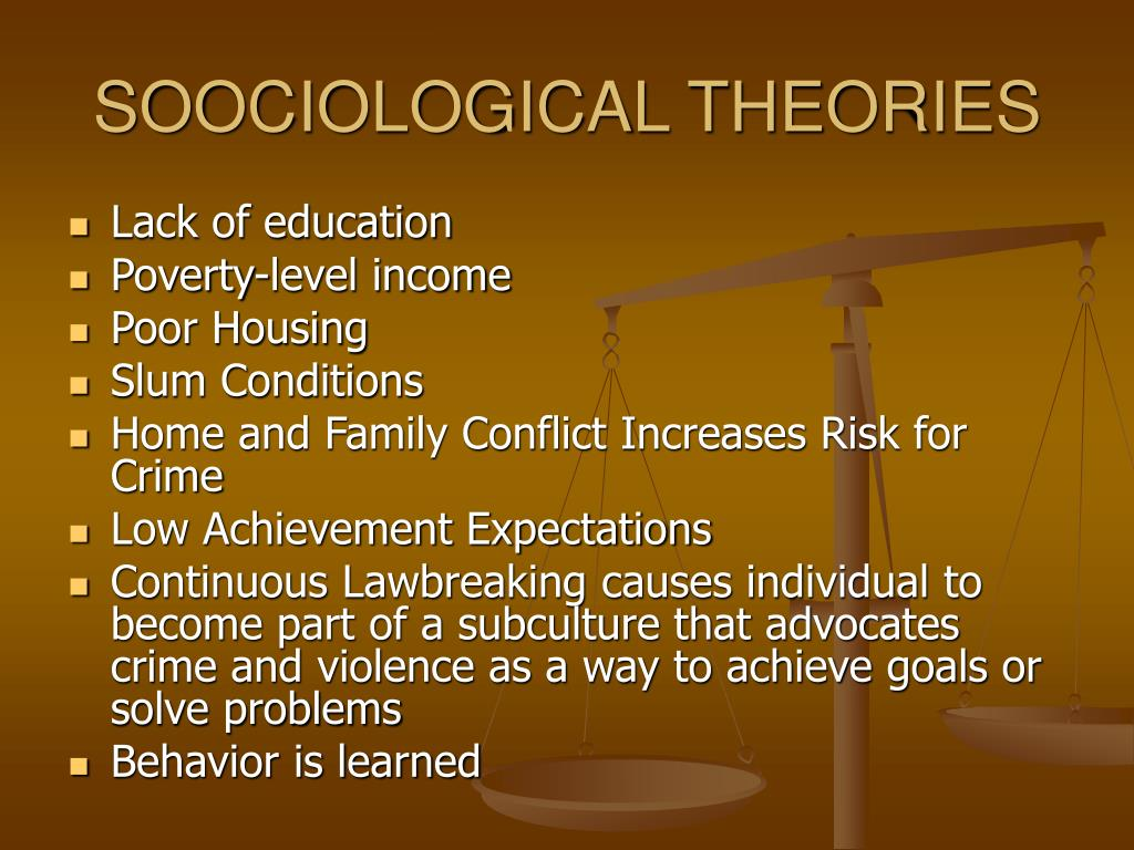 SOOCIOLOGICAL THEORIES