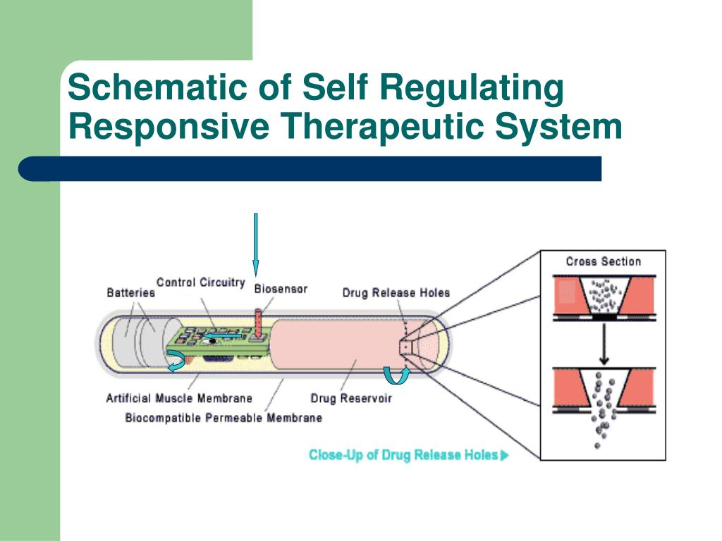 Schematic of Self Regulating Responsive Therapeutic System