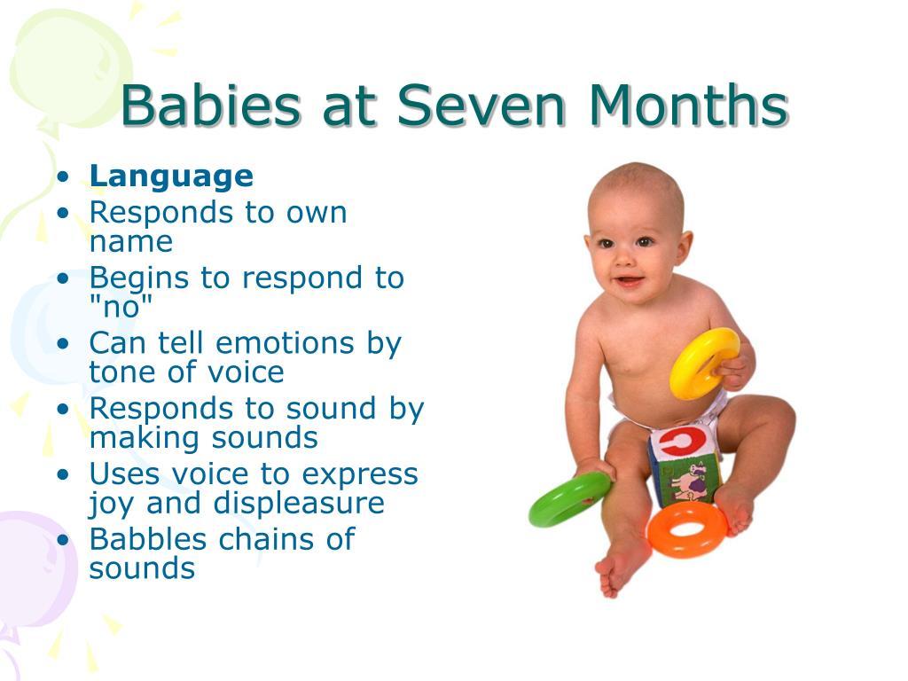 Babies at Seven Months