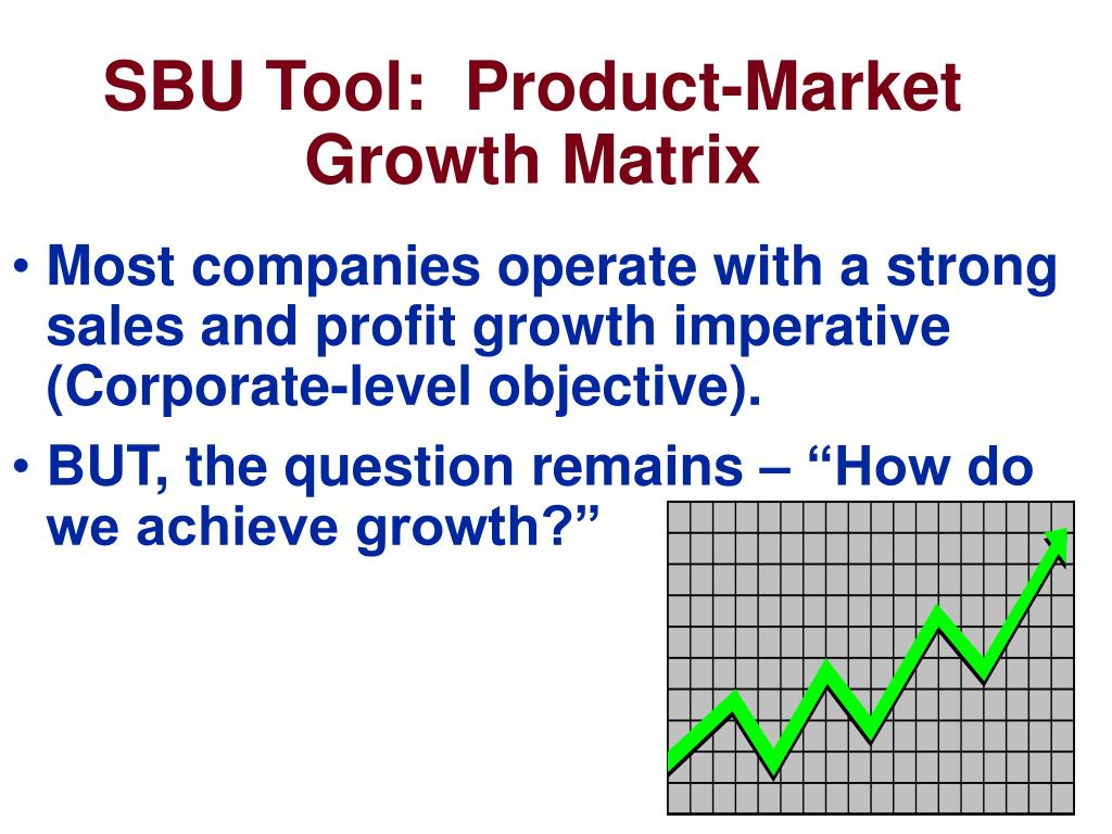 SBU Tool:  Product-Market Growth Matrix
