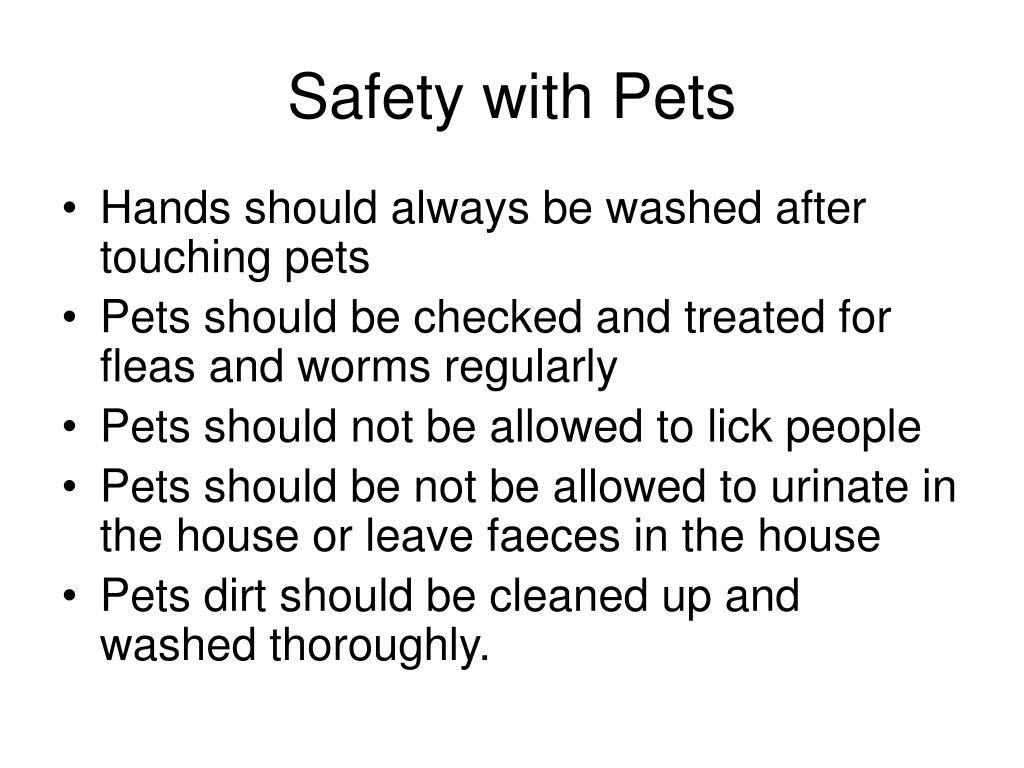 Safety with Pets