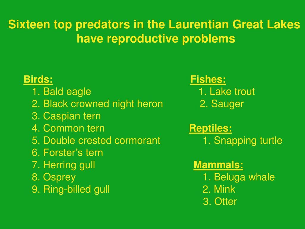 Sixteen top predators in the Laurentian Great Lakes