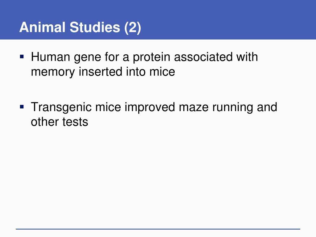 Animal Studies (2)