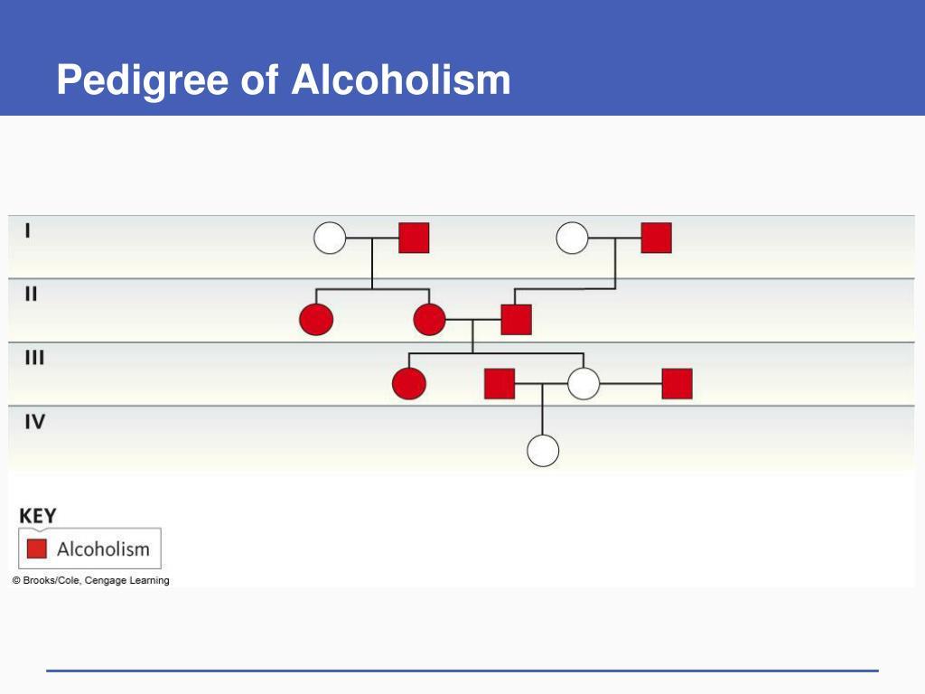 Pedigree of Alcoholism