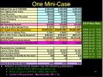 one mini case36