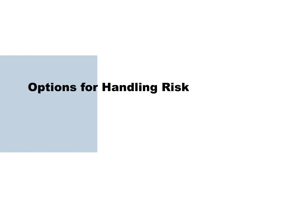 Options for Handling Risk
