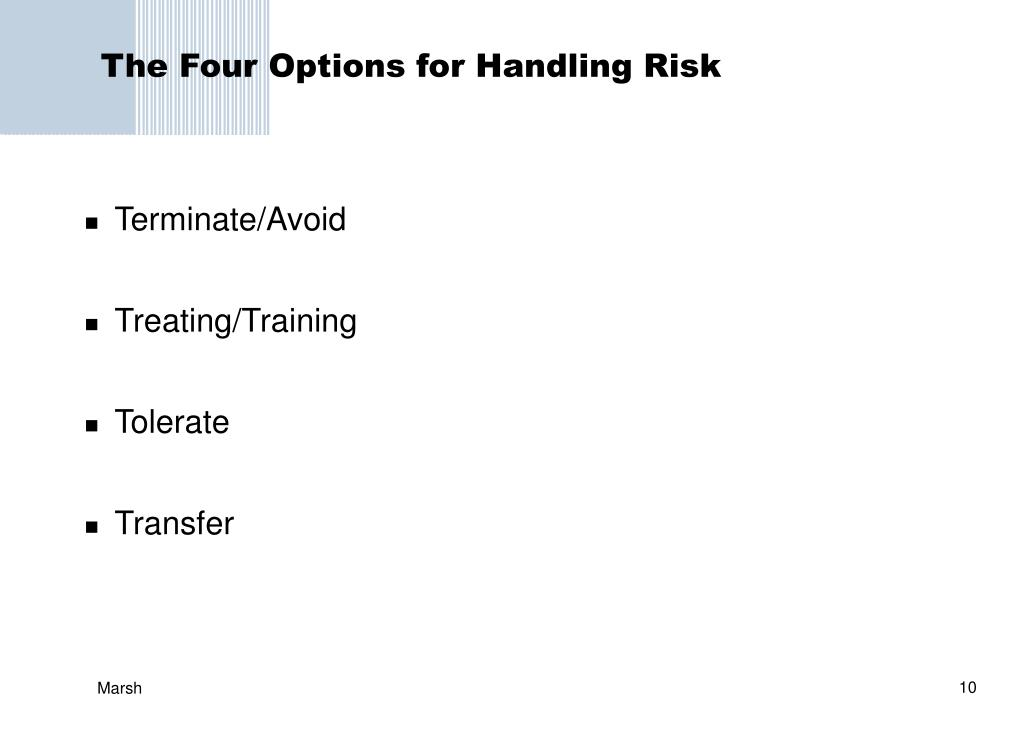 The Four Options for Handling Risk