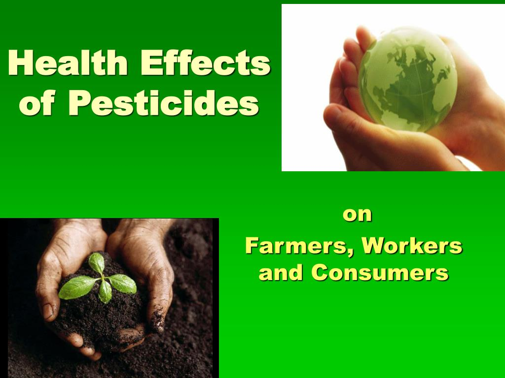 the long term effects of pesticides Pesticides have many of the same reproductive health effects as other toxic chemicals they can harm people's ability to have babies, or for babies to grow up healthy.