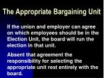 the appropriate bargaining unit10