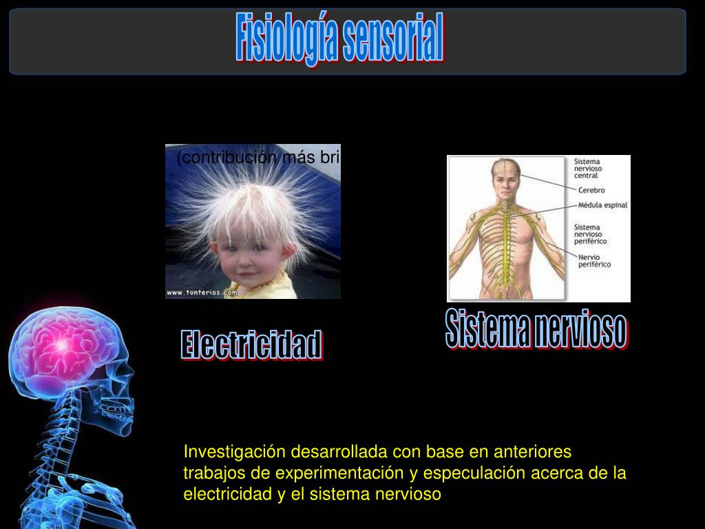 Fisiología sensorial