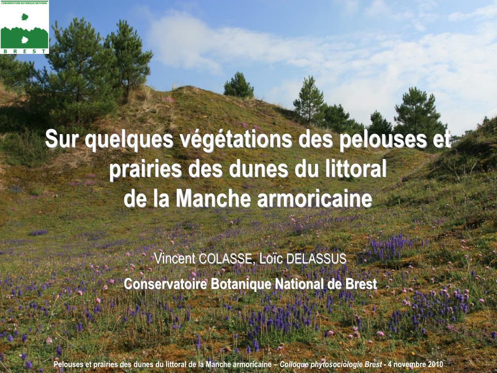 Sur quelques végétations des pelouses et prairies des dunes du littoral