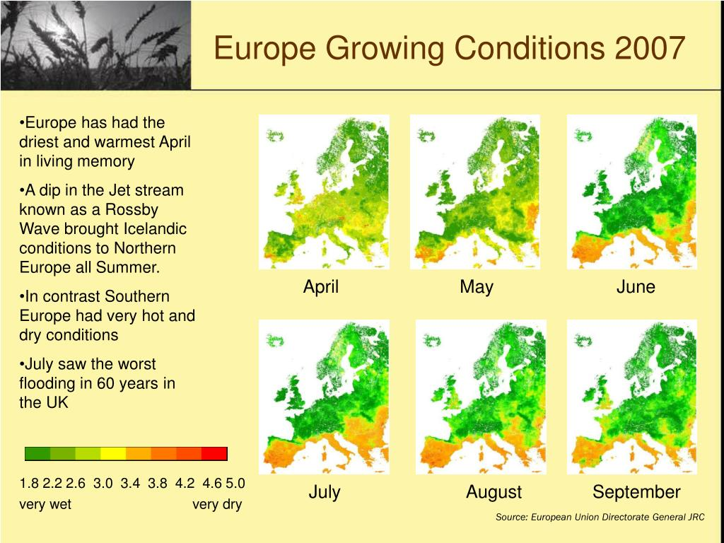 Europe Growing Conditions 2007