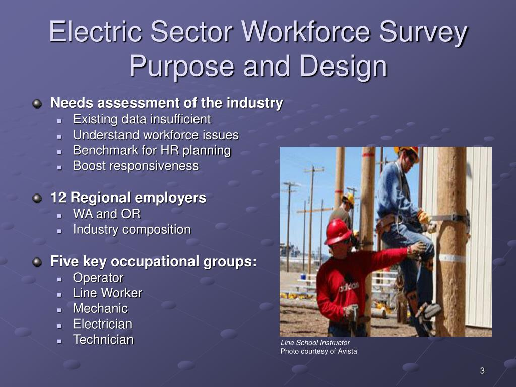 Electric Sector Workforce Survey