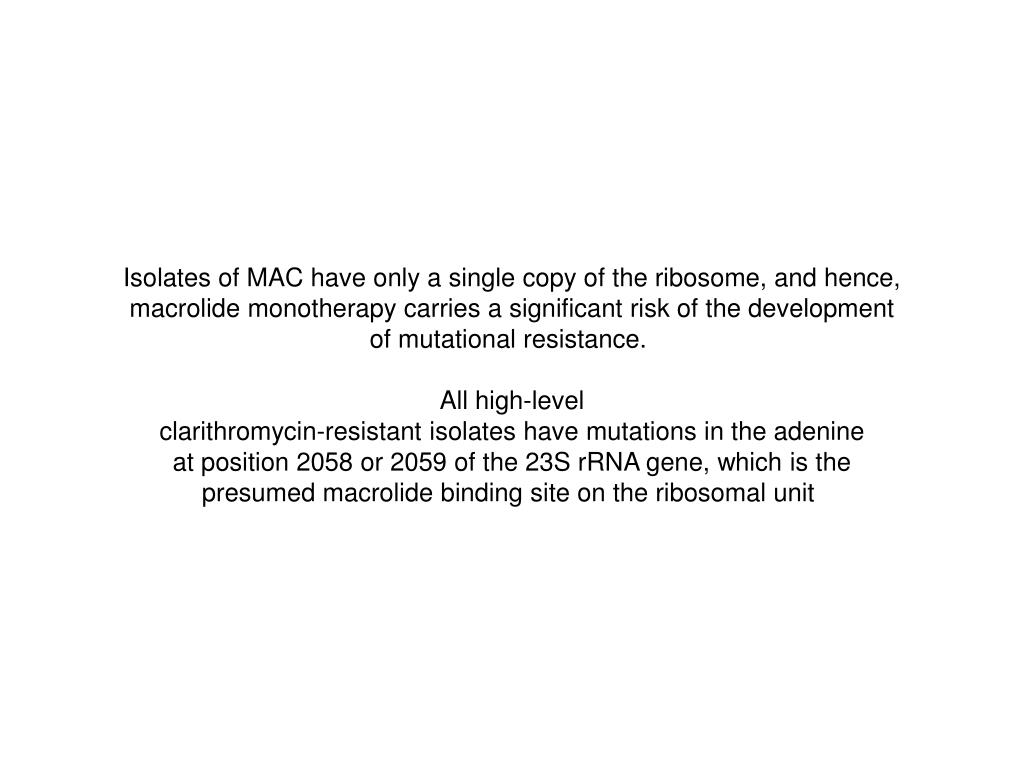 Isolates of MAC have only a single copy of the ribosome, and hence,