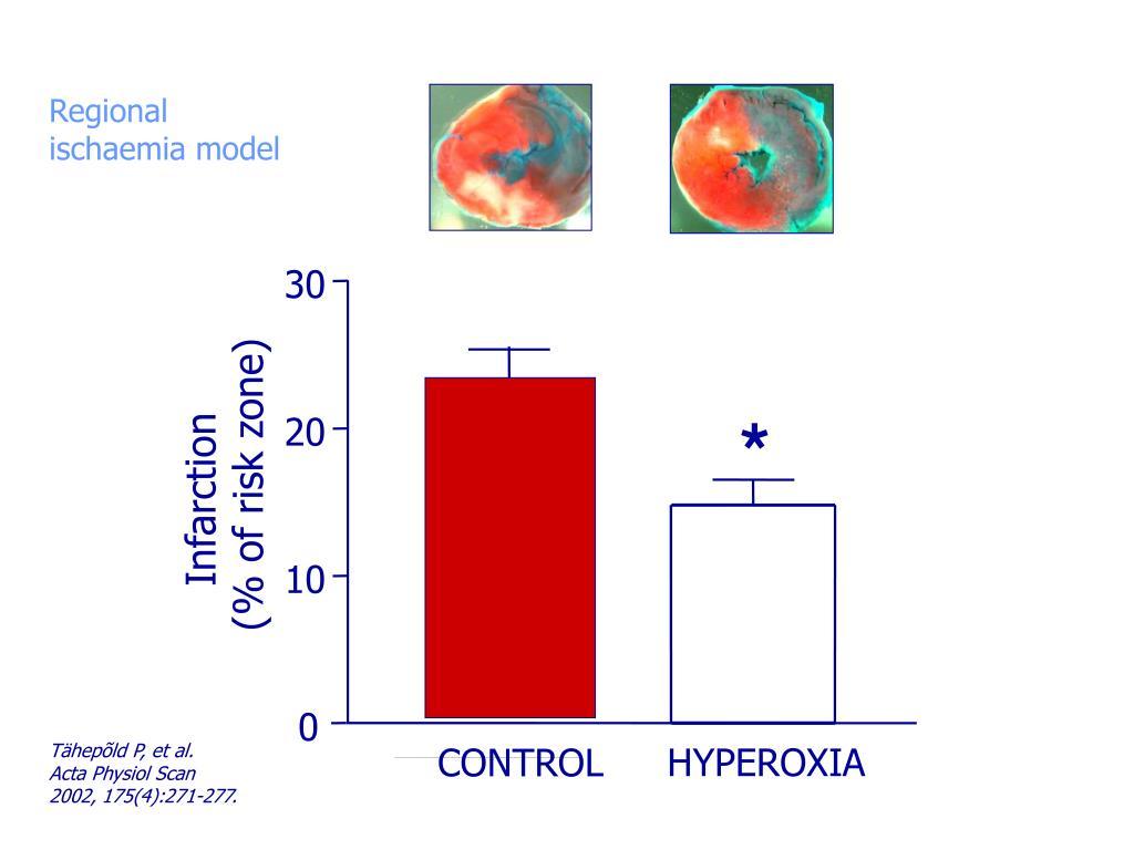 Regional ischaemia model
