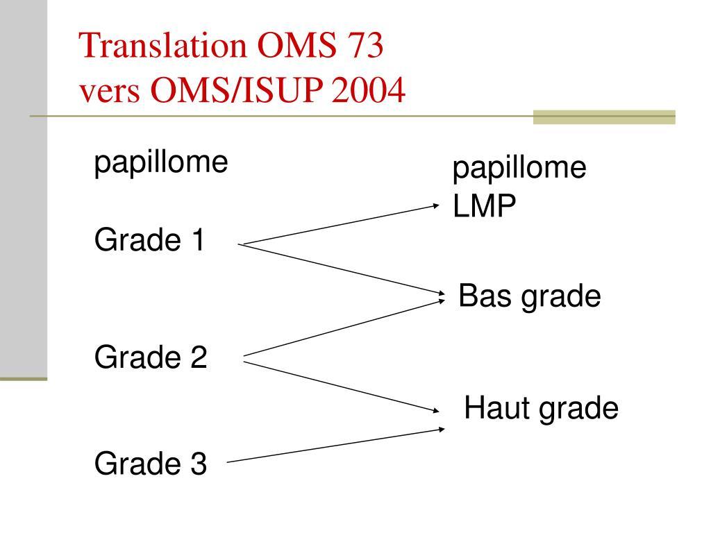 Translation OMS 73