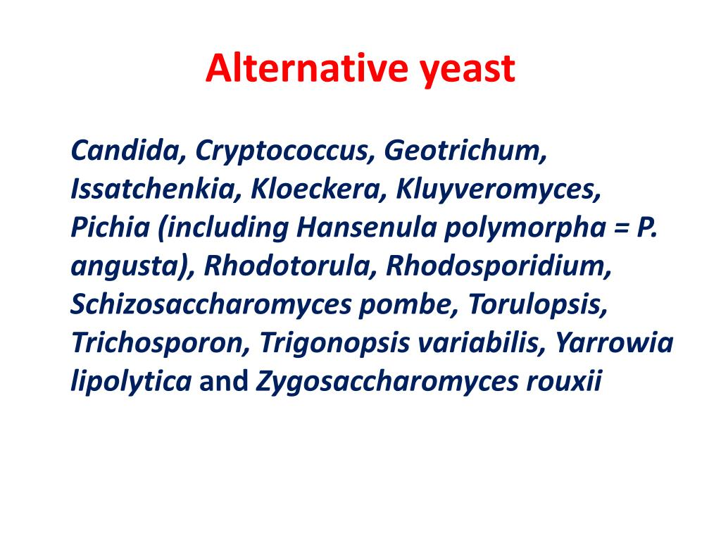 Alternative yeast