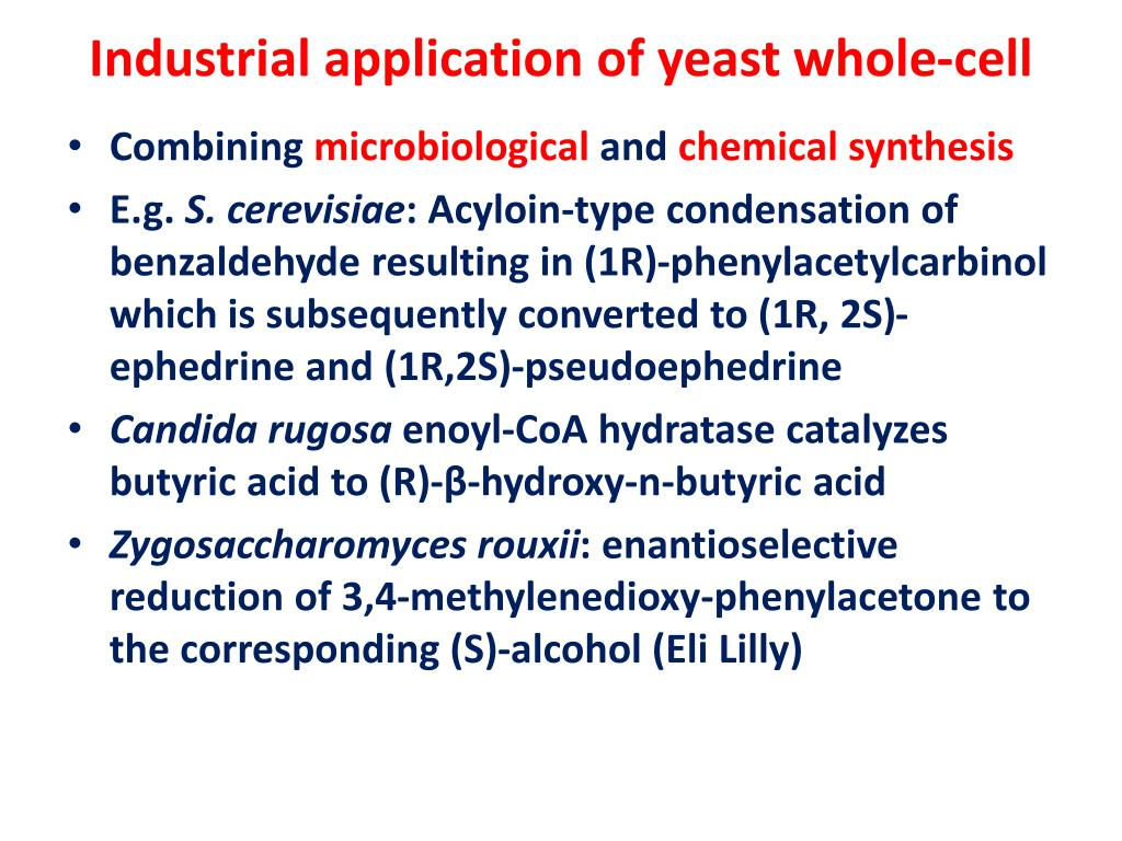 Industrial application of yeast whole-cell