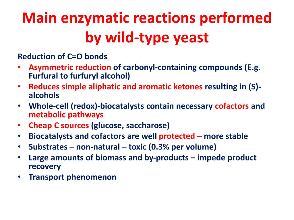 Main enzymatic reactions performed by wild-type yeast