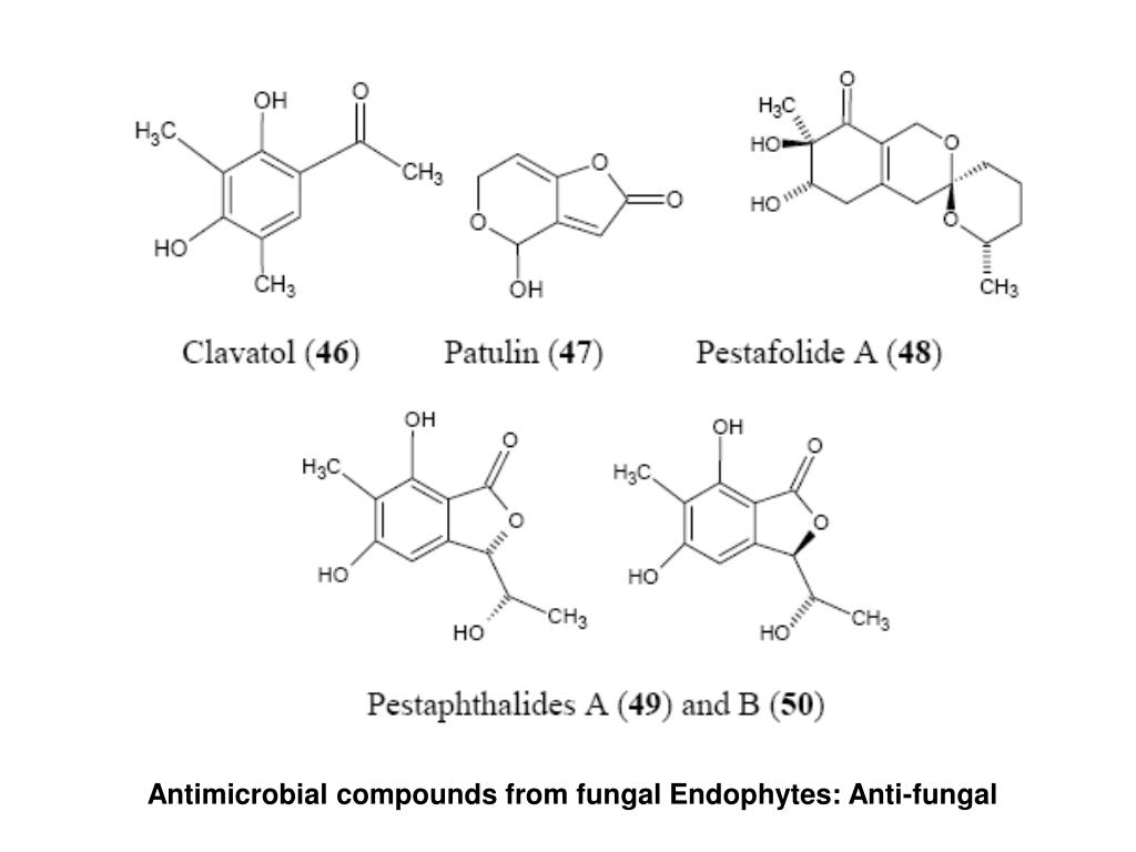 Antimicrobial compounds from fungal Endophytes: Anti-fungal
