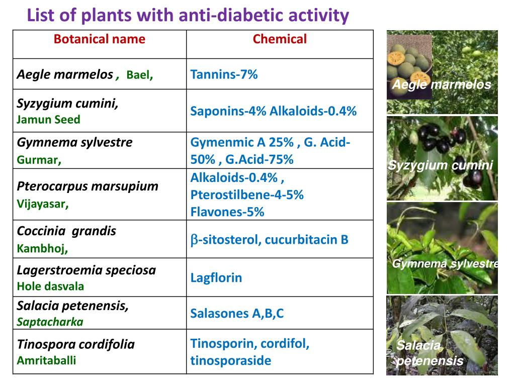 List of plants with anti-diabetic activity